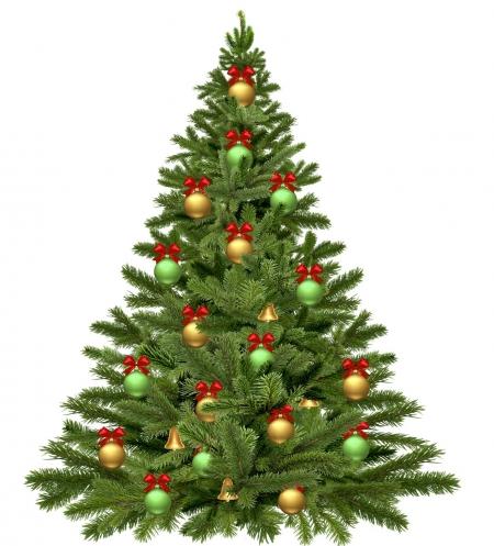 christmas-tree-1808558_1280.jpg