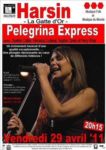 pelegrina express affiche commerces.jpg