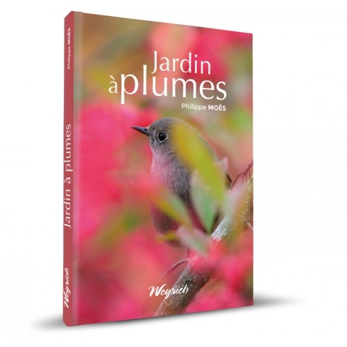 jardin-a-plume-web-500x500.jpg