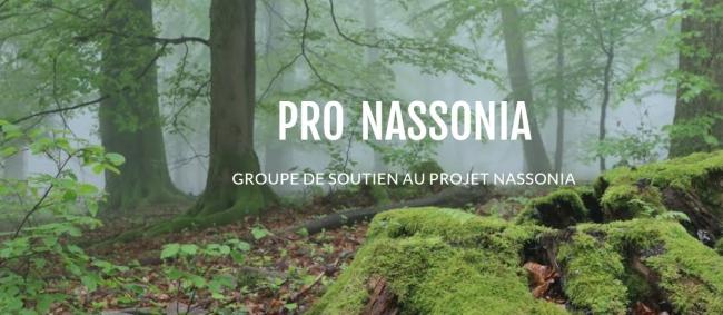 pronassonia.jpg